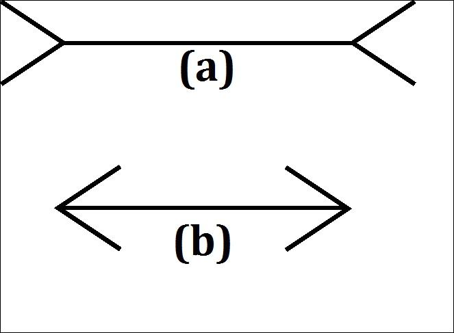 Regardez bien ces deux flèches, laquelle est la plus longue ?