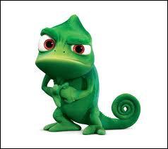 Comment s'appelle son caméléon ?
