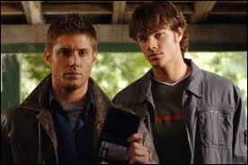 Dans quelle série retrouve-t-on Sam et Dean ?
