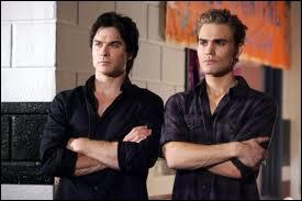 Dans quelle série retrouve-t-on Damon et Stefan ?