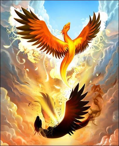 Quel est cet oiseau étincelant qui renaît de ses cendres ?