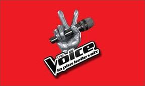 The Voice 2012 : la plus belle voix