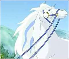 Comment s'appelle ce cheval et à qui appartient-il ?