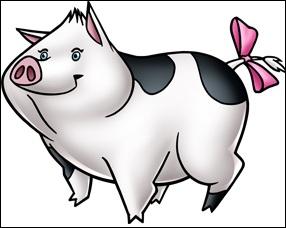 Qui est ce cochon ?