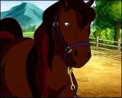 Comment s'appelle ce cheval, assez espiègle ?