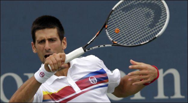 Dans quel sport s'illustre Novak Djokovic ?