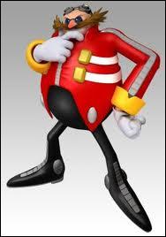 Il est l'ennemi juré de Sonic, il a un très grand QI et est savant. Quel est son nom ?