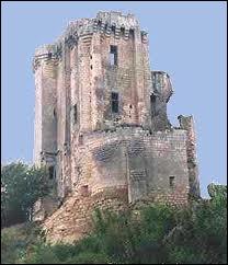 Quelle partie du château abritait les appartements du seigneur ?