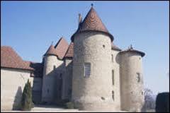 Lorsque vous approchez d'un château médiéval, vous voyez souvent ces tours coiffées de toitures coniques caractéristiques. Elles sont appelées...