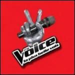 Quelle est l'origine du concept de l'émission   The Voice   ?