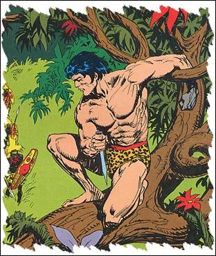 Dans les années 80, quel groupe à la carrière météoritique a chanté ''Tarzan Boy'' ?