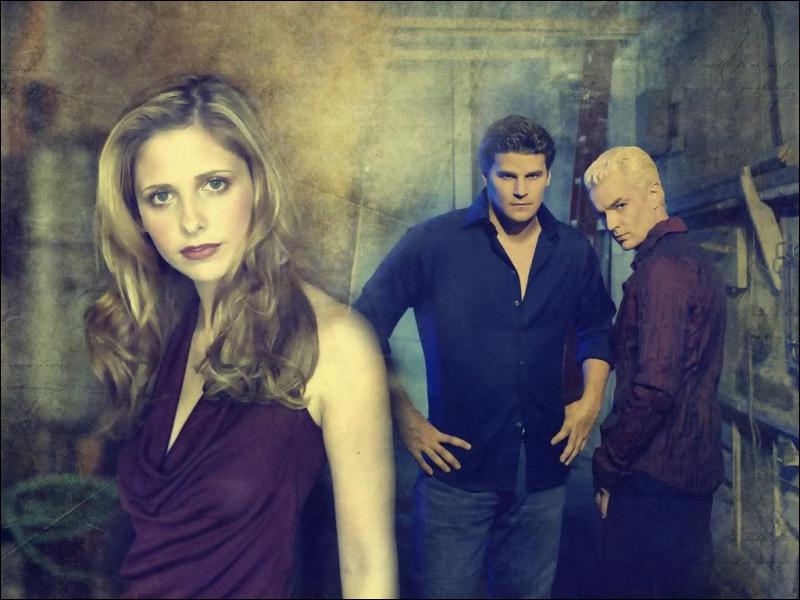 Dans quelle série retrouve-t-on Buffy, Spike et Angel ?