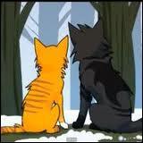 Comment s'appelait le meilleur ami et voisin d'Etoile de Feu avant son arrivée dans la forêt ?