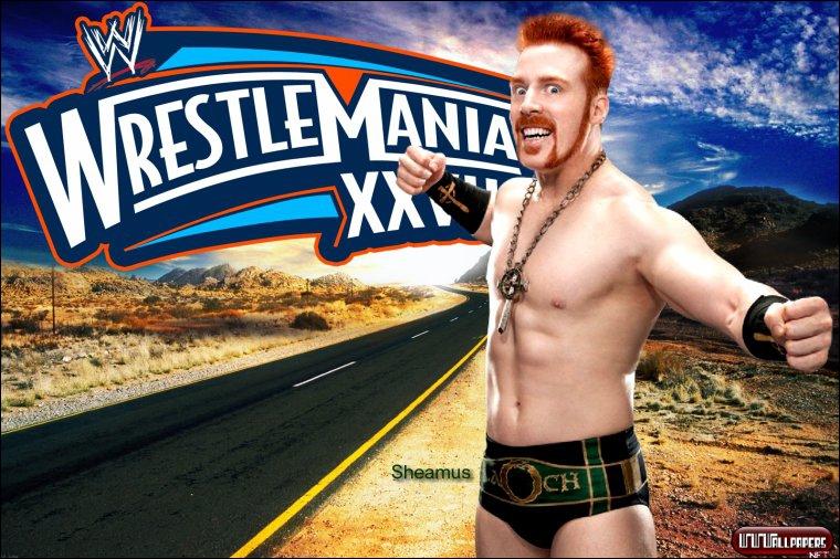 Qu'a remporté Sheamus à Wrestlemania 28 ?
