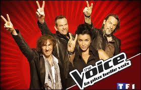 Qui présente  The Voice  ?