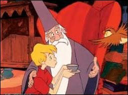 Comment s'appelle le hibou de Merlin l'enchanteur qui a sauvé Arthur de situations dangereuses ?