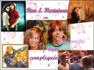 Qui sont les enfants de Ron et Hermione ?