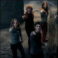 Par qui Sirius Black a-t-il été tué ?