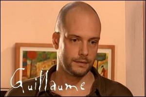 Quel est le métier de Guillaume ?