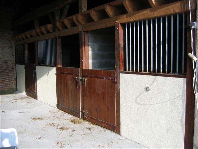 Où vivent principalement les chevaux ?