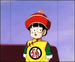 A quel âge voit-on Sangohan pour la première fois ?