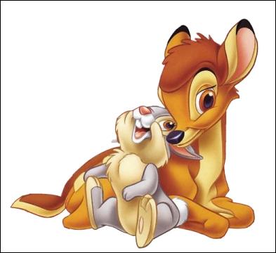 Dans Bambi, quel(s) personnage(s) trouve(nt) une compagne ?