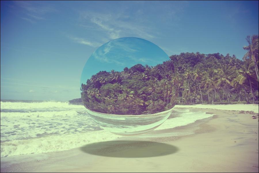 D'aspect gélatineux, je finis souvent ma vie sur une plage !