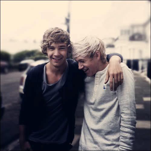 Liam et Niall ont tous deux une même chanson préféré de leurs albums, laquelle ?