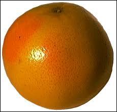 Lequel de ces fruits est le plus gros ?