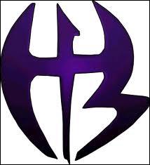 A quel catcheur appartient ce logo ?