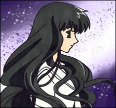 Quelle est l'histoire de Saki ?