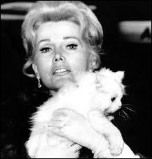 La quintescence de la star hollywoodienne de la grande époque, avec un superbe chat blanc. Qui est-elle ?