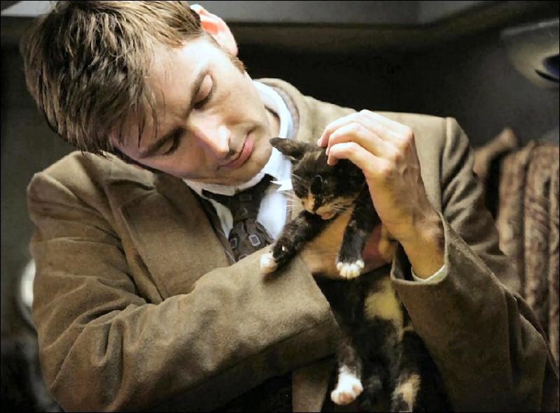 De celle-ci, on ne sait si elle est tirée d'un des épisodes de la série ou pas. Qui est la star qui caresse gentiment ce joli chaton noit et blanc ?