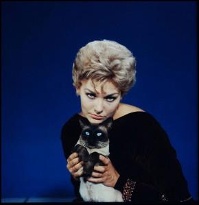 Et voici en couleur une photographie promotionnelle de ce même film. Si l'actrice jouait Gillian dans le film, le siamois jouait lui ?