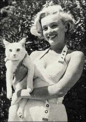 Avec dans ses bras un joli chat aussi blanc qu'elle est blonde, la star est ?