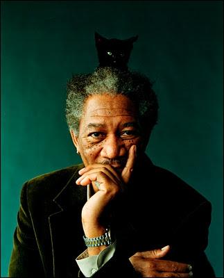 Une photographie très originale de ce grand acteur, avec son chat. Qui est-il ?