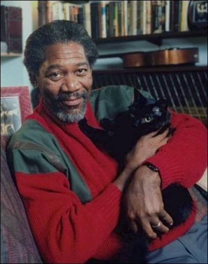 Encore une très jolie photo de la star de la question 1, avec son chat. Quel rôle a-t-il joué cet ami des chats ?