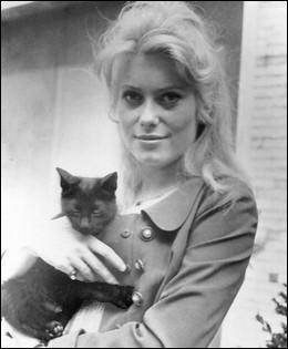 Encore bien jeune sur cette photographie, c'est la soeur de Françoise Dorléac qui pose ainsi, avec un joli chat dans les bras. Qui est-elle ?