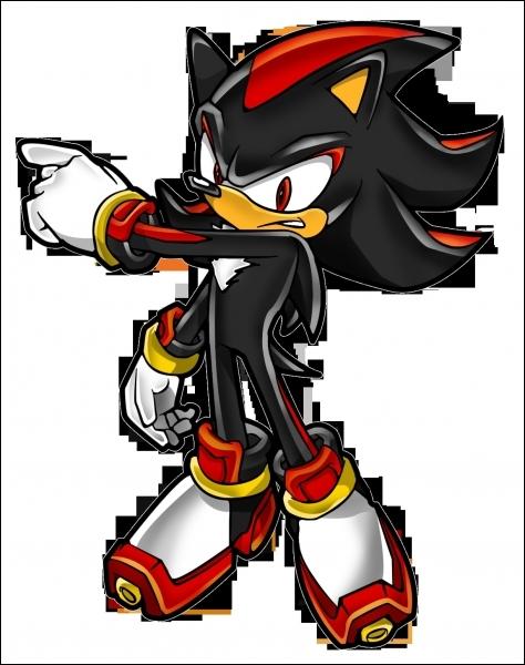 Qui est l'opposé de Sonic ?