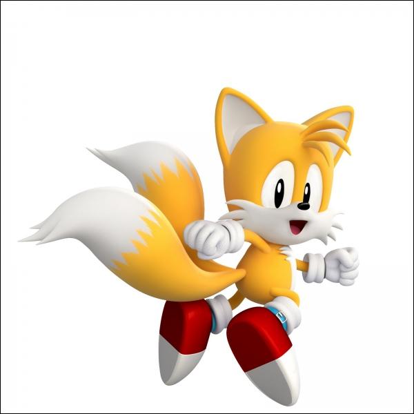Sonic est-il accompagné ?