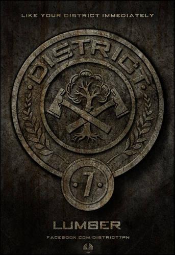 District 7 : quelle est sa spécialité ?