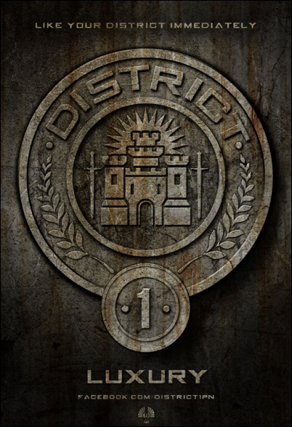 District 1 : quelle est sa spécialité ?