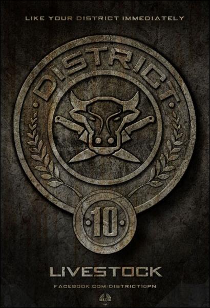 District 10 : quelle est sa spécialité ?