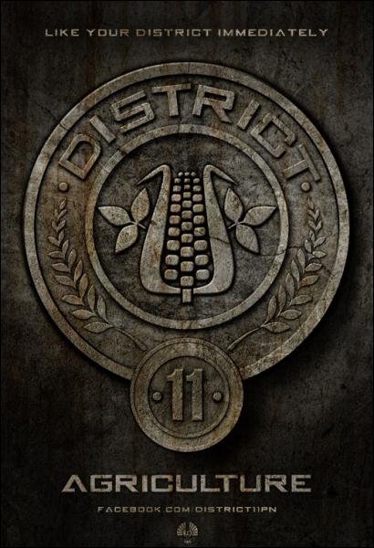 District 11 : quelle est sa spécialité ?