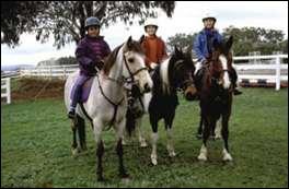 Comment s'appelle le cheval que Lisa monte ?