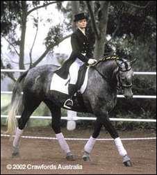Comment s'appelle le cheval de Dorothée ?