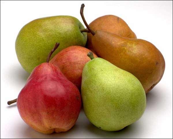 Quelle voiture de la gamme Renault fut-elle désignée par le nom de ce fruit des vergers ?