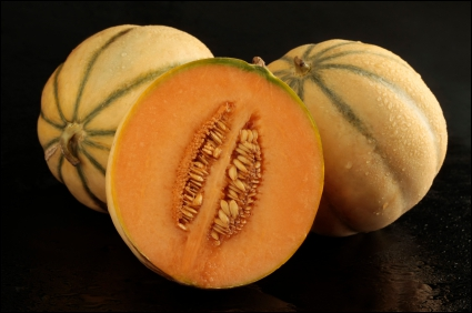 Quand il ne s'agit pas du fruit, que peut désigner le nom de cette cucurbitacée ?