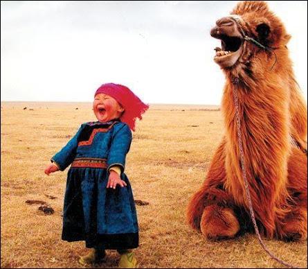 Dans ce pays, on peut encore apercevoir quelques chameaux sauvages !