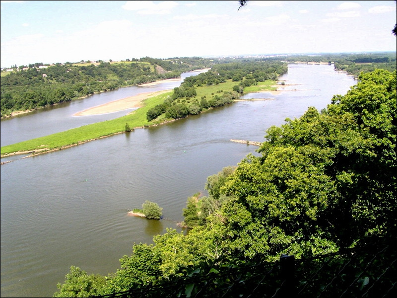 La Loire est le plus long fleuve dont le cours soit entièrement français. Parmi les suivants, lequel n'est pas un de ses affluents ?
